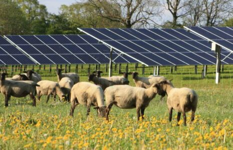 CAV Sonne und Wind I - Spezialfonds für Photovoltaik und Windkraft