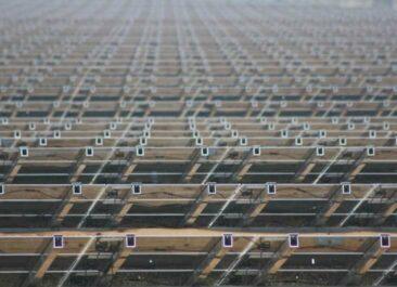 Commerz-Real CFB Fonds: Der Solarpark Groß Dölln