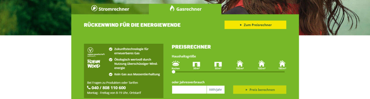 Greenpeace Energy - Windgas ist Ökogas aus Windstrom