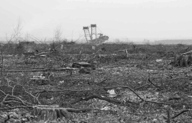 Kohleausstieg - Kohlekraft zerstört Natur und Klima, hier im Hambacher Forst