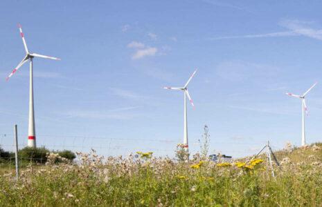 Lacuna GmbH aus Regensburg - Windkraftfonds aus Bayern