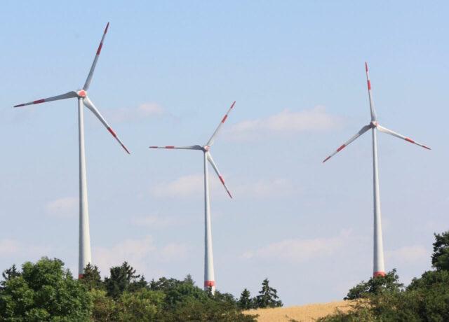 Lexikon der ökologischen Geldanlagen bei Grüne Sachwerte