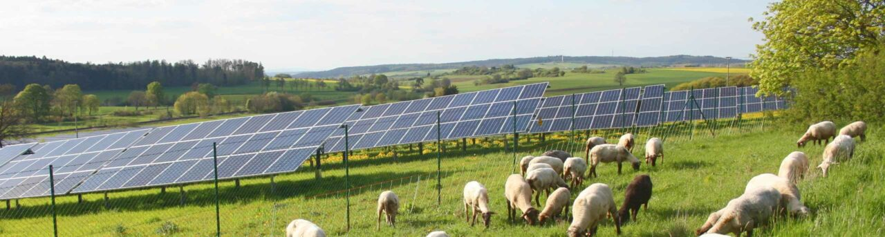 Negative Strompreise in Deutschland 2020