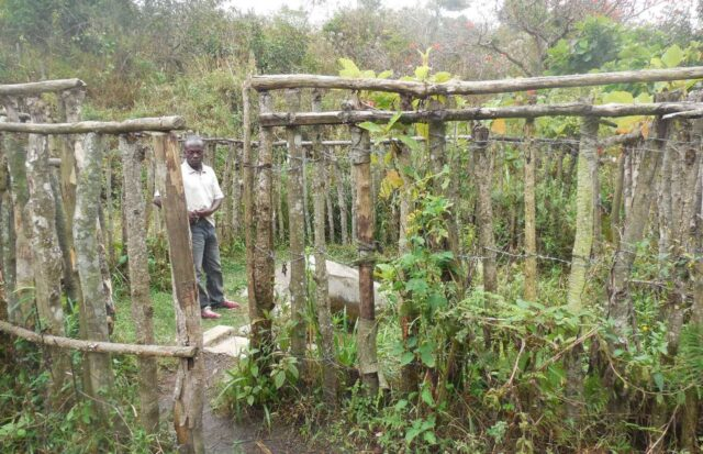 Entwicklungsarbeit mit Oxfam Deutschland: Baumspendeaktion