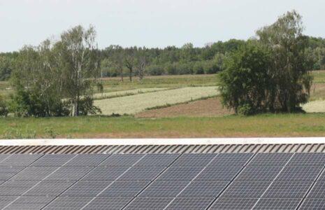 Solar-Aufdachanlage vor Feld mit Bäumen