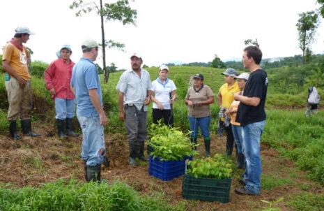 Bauminvest 3 - Waldfonds betreibt Baumschule und Plantagen in Costa Rica